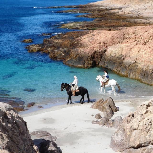 Autotour en Patagonie - Promenade à cheval