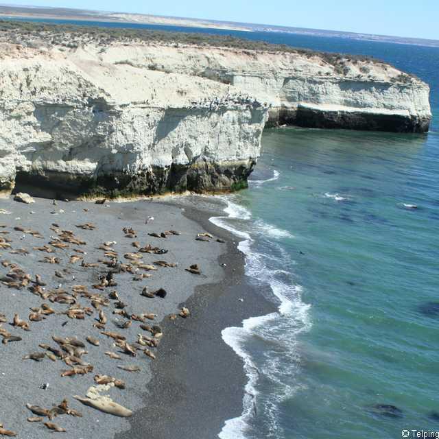 Séjour en Patagonie - Puerto Madryn