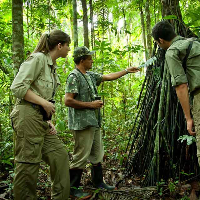 Lodge Brésil - Observation de la flore amazonienne au Cristalino Jungle Lodge, Voyage au Brésil