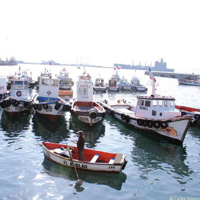 Voyage au Chili - Port de Valparaiso - Séjour à Santiago