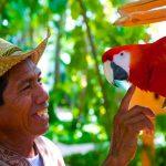 Voyage au Mexique - Belmond Maroma Resort & Spa