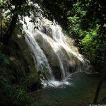 Voyage au Mexique - Forêt tropicale - Voyage au Yucatan