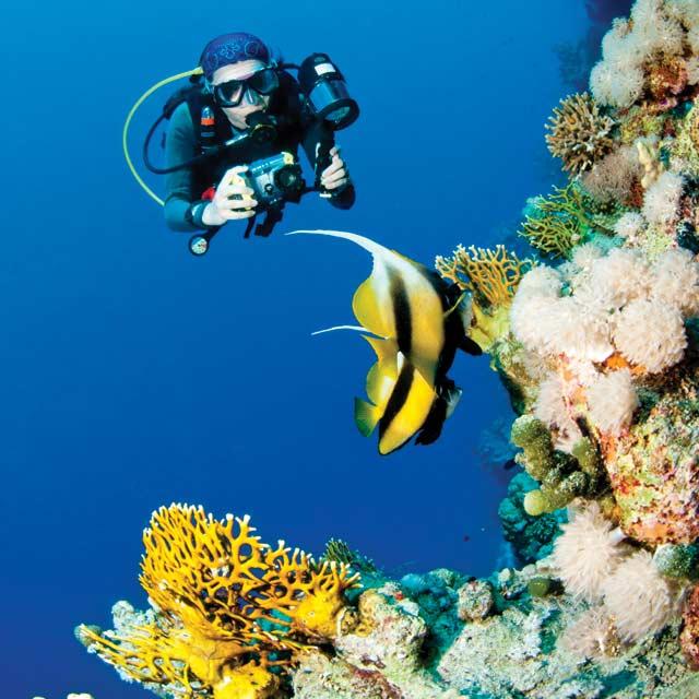 Plongée sous-marine, Voyage Panama
